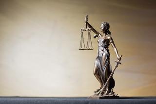 Sąd: Kara więzienia w zawieszeniu za kradzież obrazu 'Gęsiarka'