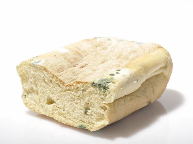 """Evo zašto BAŠ NIKAD ne biste smeli da jedete """"ČISTI DEO"""" buđavog hleba: Postoji ODLIČAN RAZLOG ZA TO"""