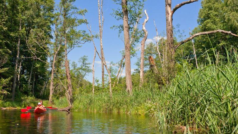 Rzeka Kurytnia