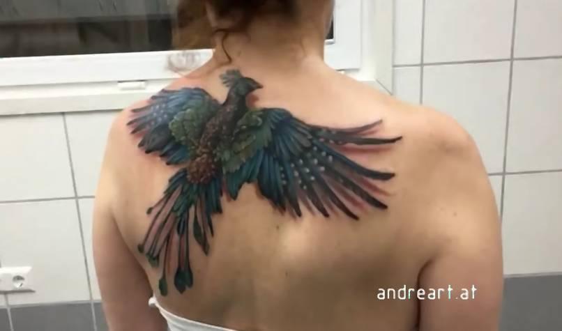 André Zechmann Ruchomy Tatuaż Feniksa