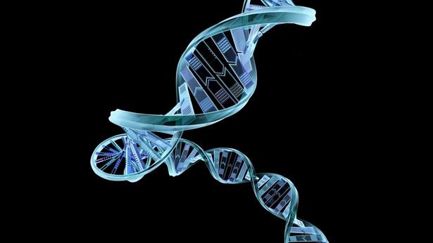 Komputerowa wizualizacja DNA, fot. Shutterstock