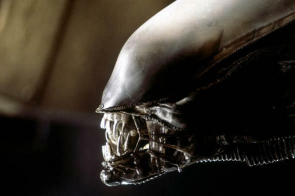 """Obcy – ósmy pasażer Nostromo"" - kadr z filmu"