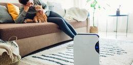 Jak poprawić jakość powietrza w domu? Oto 5 najlepszych sposobów