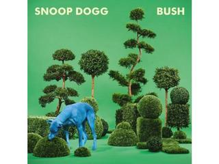 snoop dogg bush plyta