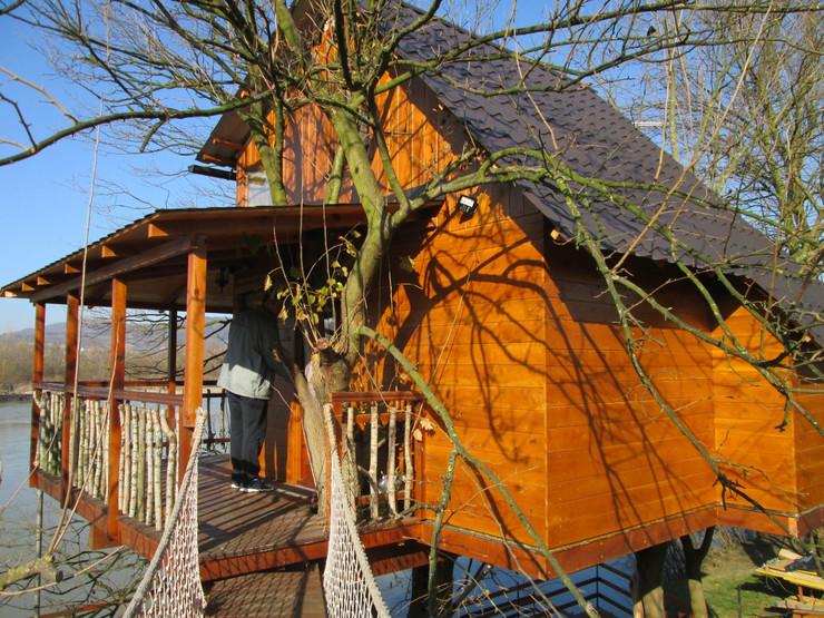 jovan cvijić kuća na drvetu dudu2 foto S. Pajić