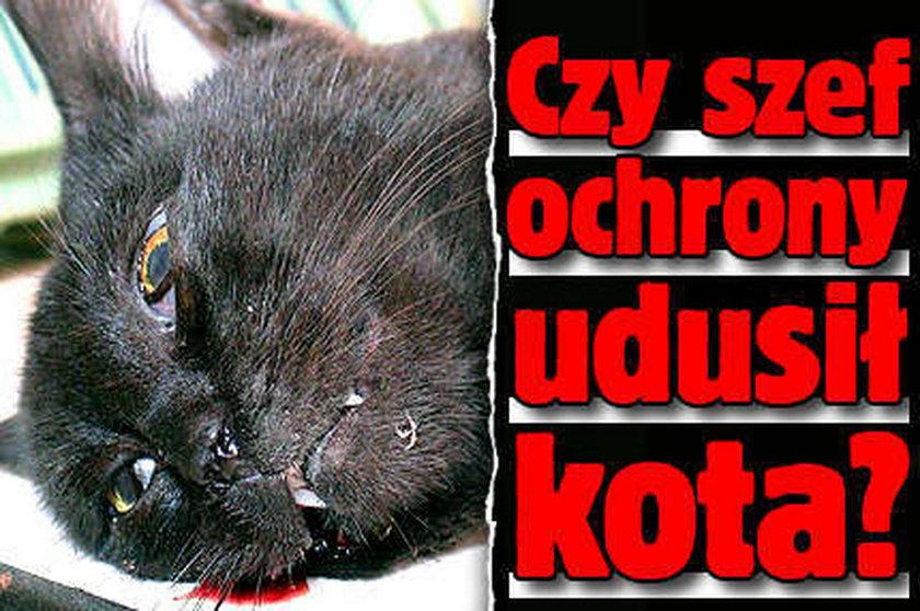 Czy szef ochrony w Tesco udusił kota?