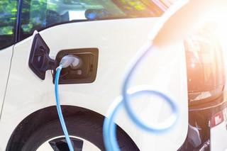 Bąk: Elektryfikacja pozbawi marki samochodów charakteru