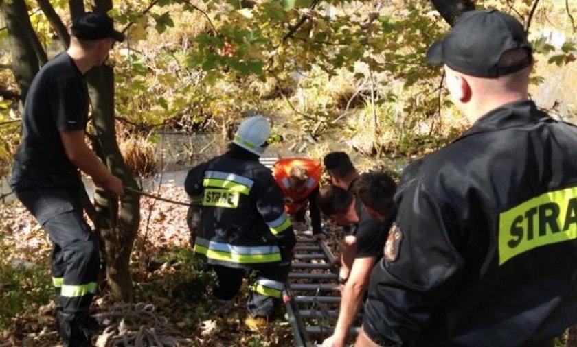 Uwięzionego w stawie mężczyznę uratowali strażacy