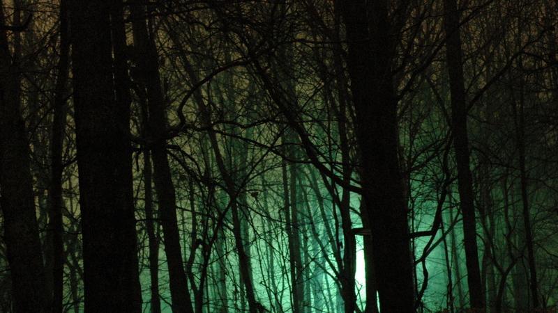 UFO w Lesie Rendlesham