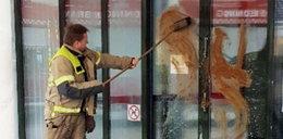 Ohydne zachowanie Polaka w Norwegii. Nie uwierzysz, co zrobił