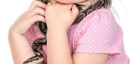 """Wąż ugryzł 5-letnią dziewczynkę w twarz w zoo. """"Pachniała jak zdobycz"""". NAGRANIE"""
