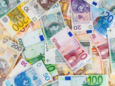 Grzegorz Schetyna chce debaty o przyjęciu euro przez Polskę