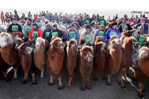 Najveća trka kamila na svetu