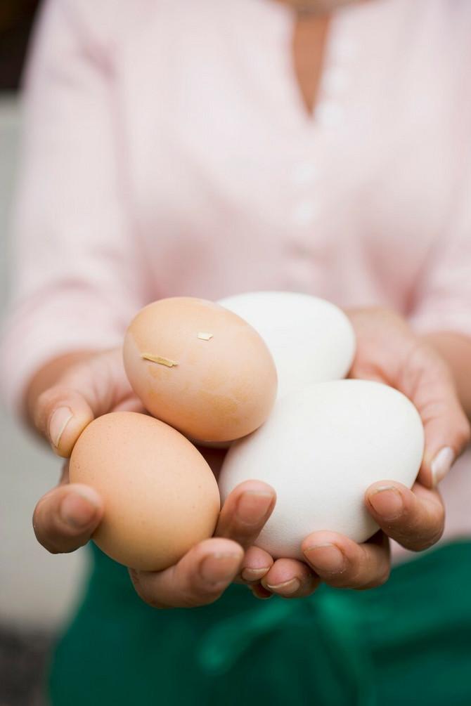 Jesti jaja ili ne?