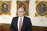 Vladan Vukosavljević u Matici Srpskoj, Strategija kulturnog razvoja
