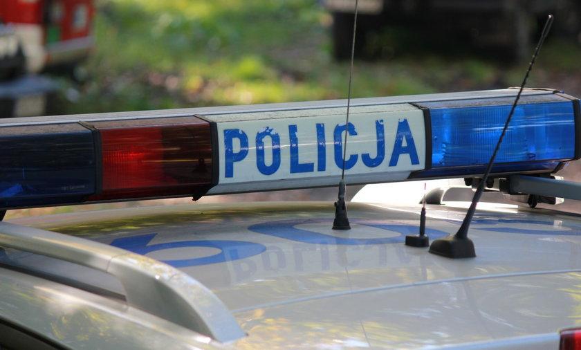 Tajemnicza śmierć młodego mężczyzny. Jego ciało znaleziono pod balami drewna [zdjęcie ilustracyjne]