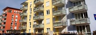 Obowiązki spółdzielni mieszkaniowych i prawa jej członków