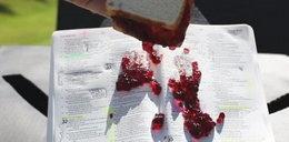 Stworzyli niezniszczalną Biblię!