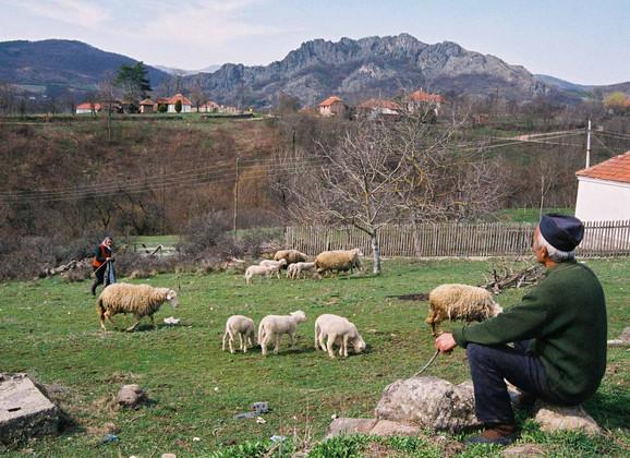 Proizvodima srpskog sela potrebna zaštita u EU