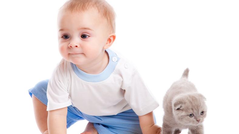Jeśli dziecko ma stały kontakt z psem lub kotem, jego układ odpornościowy uczy się rozpoznawać i zwalczać alergeny