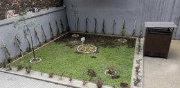 Wandale niszczą podwórko