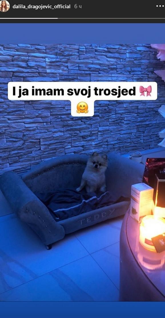 Dalila Dragojević kupila psu trosed