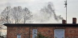 Urzędnicy z Katowic uczą, jak palić w piecu i zdobyć dotację