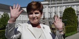 One rządzą polską polityką