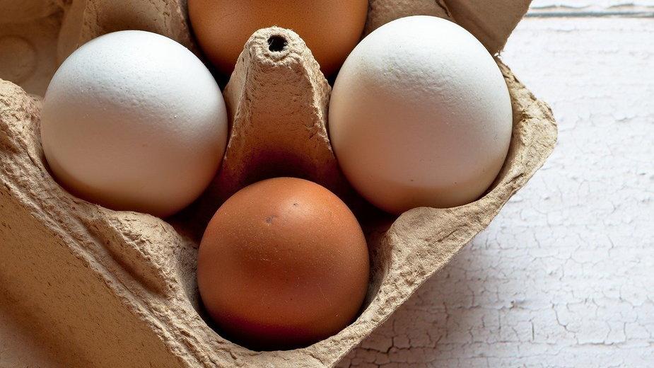 Zastosowania wytłaczanki po jajkach