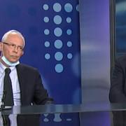 Kon i Nestorović