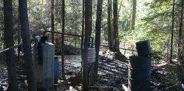 Widziałeś bimbrownię w lesie?