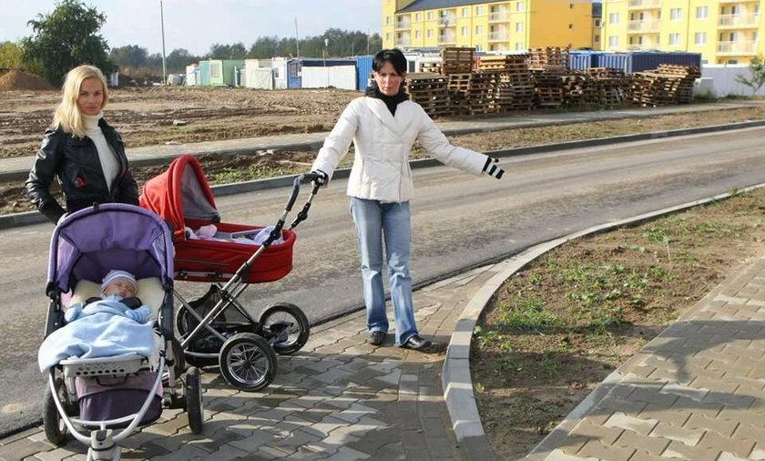 Poznań: Szef ZDM zasieje trawę na zimę