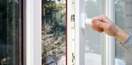 Dlaczego warto mieć w oknach moskitierę?