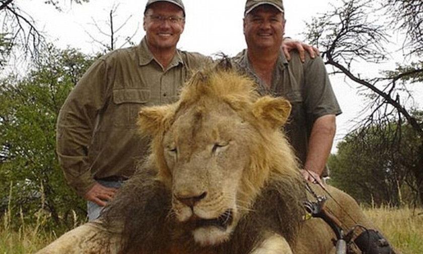 Dentysta zabił lwa Cecila, teraz sam się ukrywa