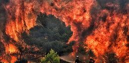 Pożary w Grecji. Prawdopodobnie doszło do podpalenia