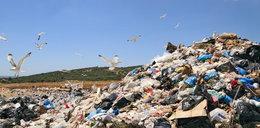 Szokujące statystyki! Coraz więcej śmieci z UE trafia do Polski