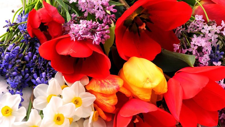 Symbolika Kwiatow Znaczenie Najpopularniejszych Kwiatow I Ich Kolorow Dom