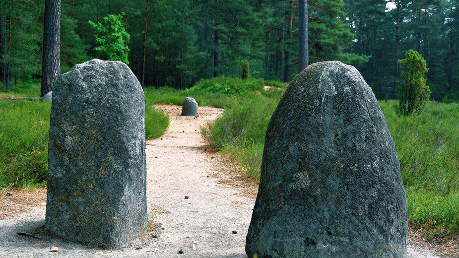 Rezerwat Kamienne Kręgi w Odrach