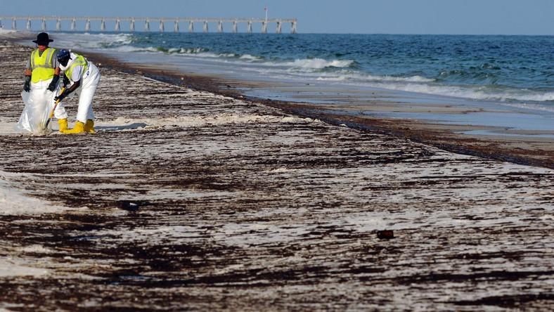 Sprzątanie Zatoki Meksykańskiej wstrzymane