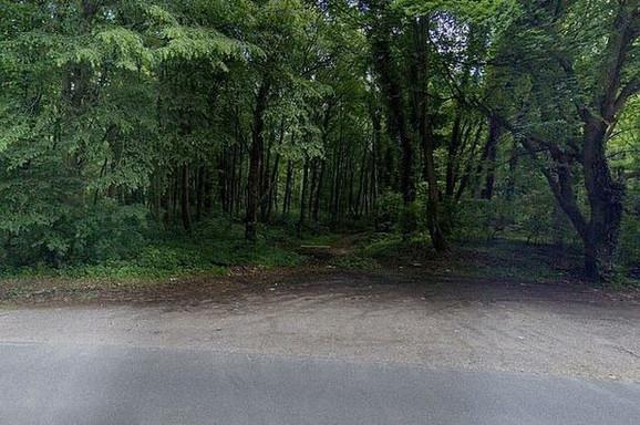 Šuma Rec je udaljena oko 90 kilometara od Pariza