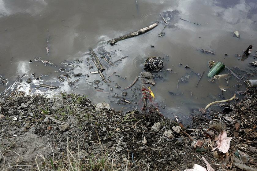 Beata Grzelec-Spetruk , naczelnik wydzialu ekologii i gospodarki odpadami UM Swietochlowice