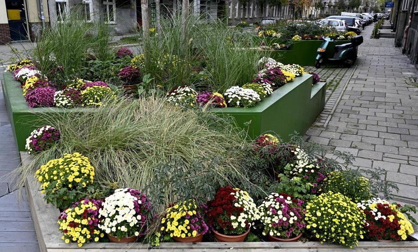 Ołbińskie kwietniki ozdobione kwiatami spod cmentarza