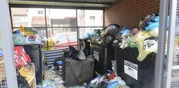 Będzie śmieciowa straż miejska?