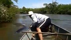 Brazylia: wędkarze drażniący gigantyczną anakondę ukarani przez władze