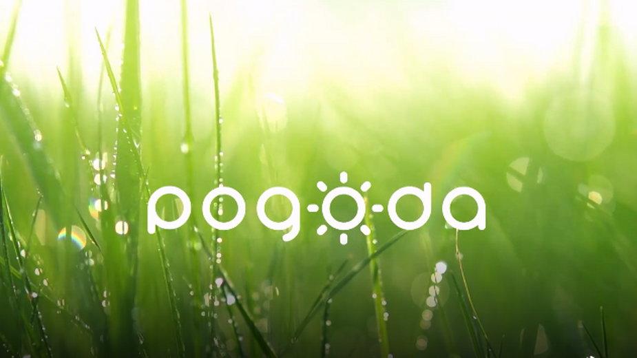 Pogoda green