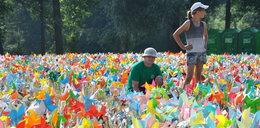 Tysiące kolorowych wiatraczków