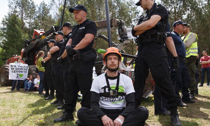 Protestowali w obronie Puszczy Białowieskiej