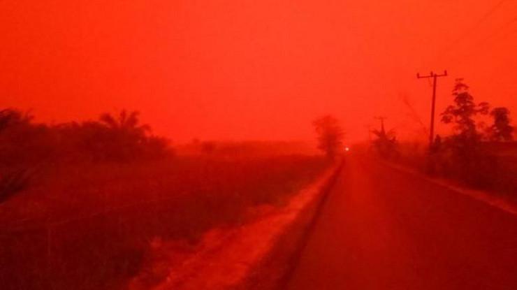 crvena izmaglica01