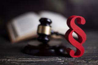 Kopcińska: Prace nad projektem zmian w Kodeksie karnym trwały kilkanaście miesięcy