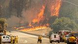 Śmiercionośne pożary. Wśród ofiar strażacy i małe dzieci